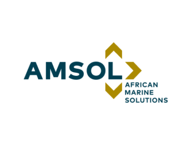 African Marine Solutions  image